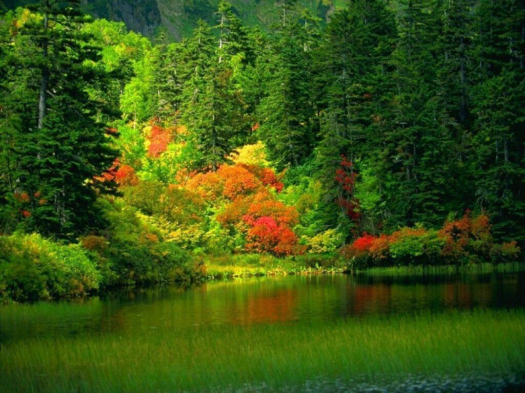 L'automne 2eje2za7