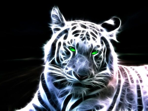 fond d'cran tigre 3D