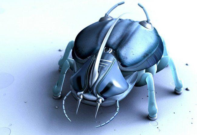 scarabée 3D