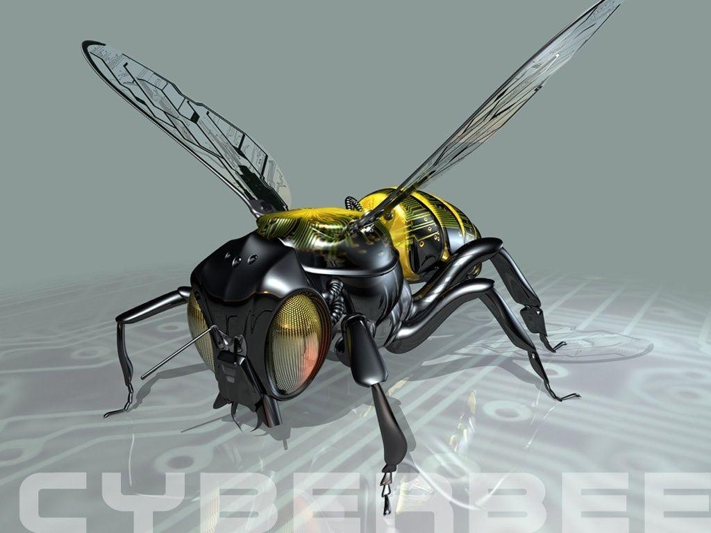 insecte 3D