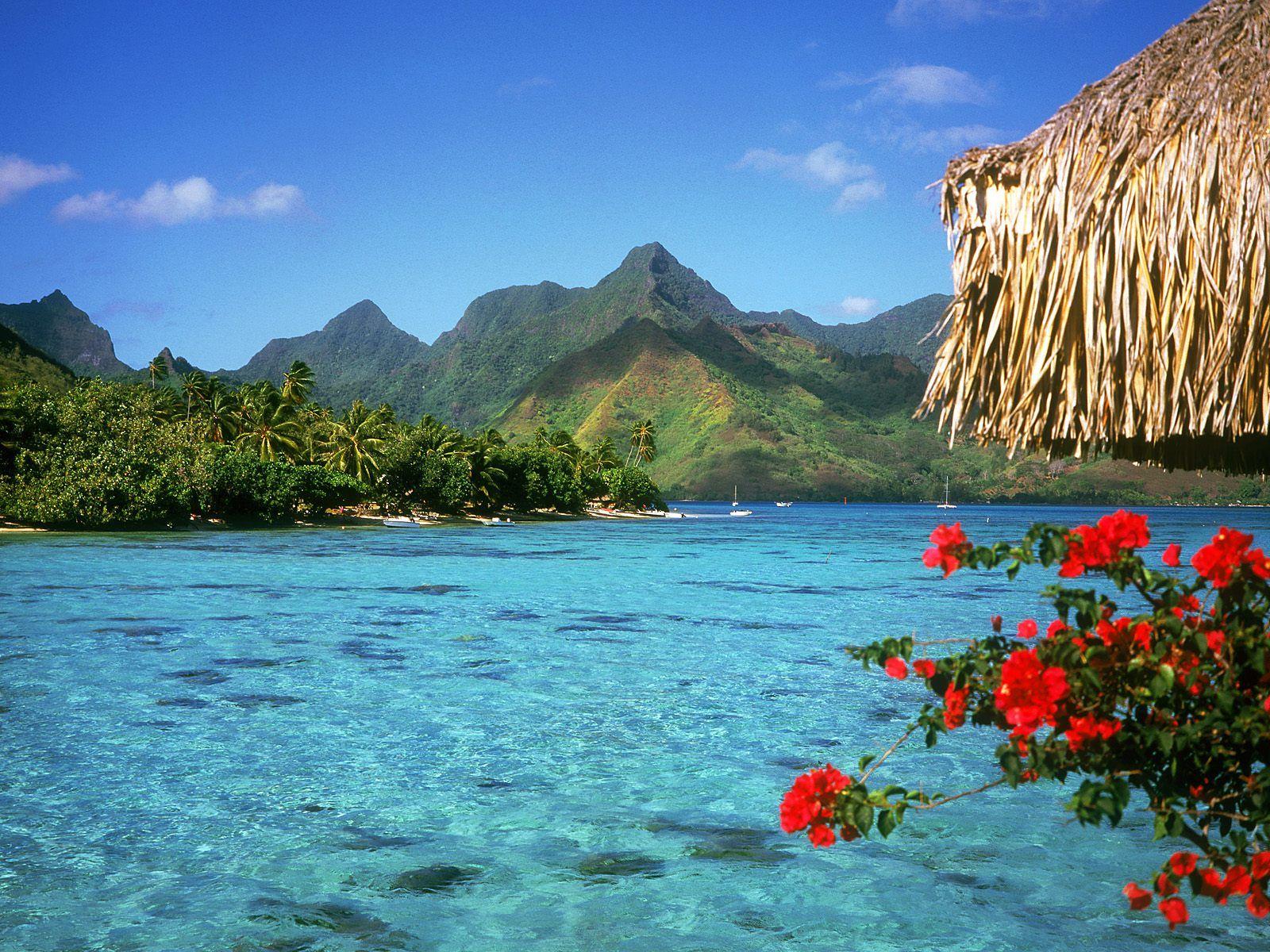 fond d'écran lagon a Bora Bora