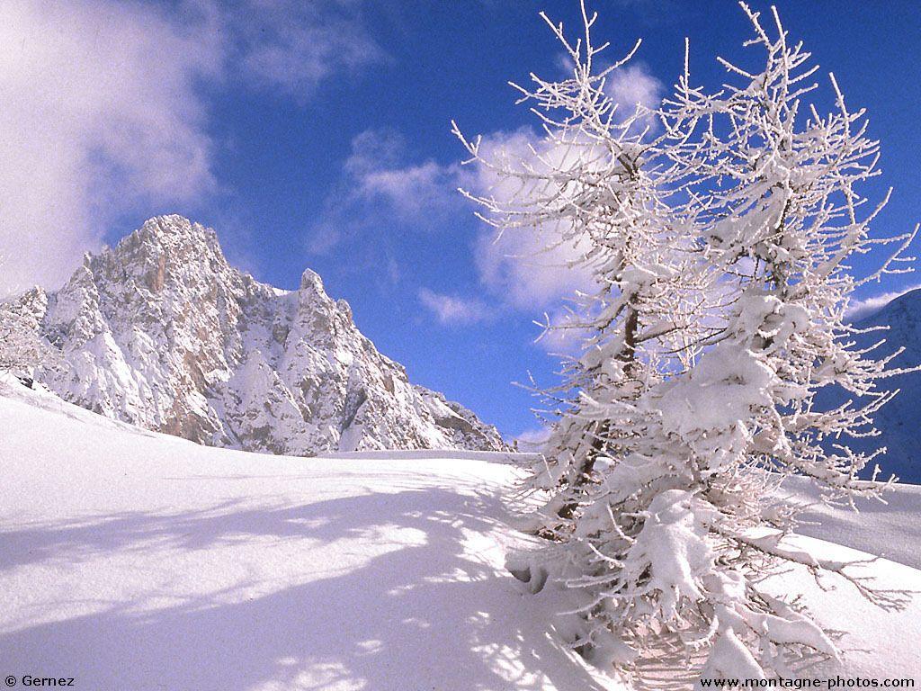 scenery wallpaper images fond d 39 cran paysage d 39 hiver. Black Bedroom Furniture Sets. Home Design Ideas