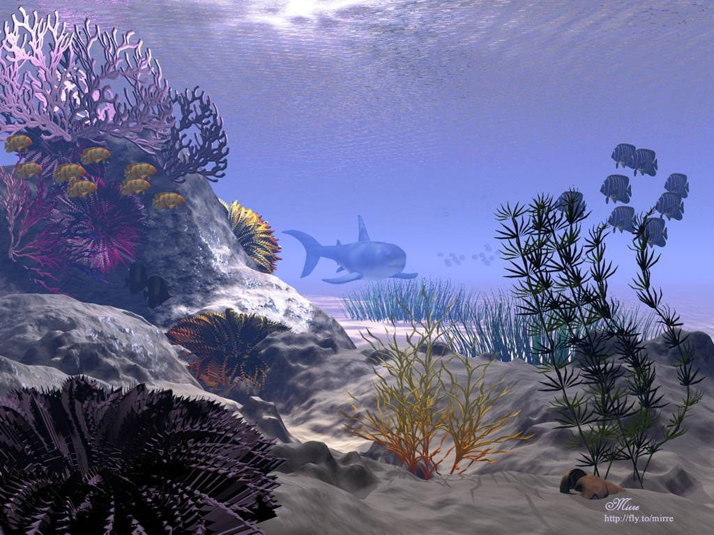 Fonds d ecran 3d ocean for Photo ecran pc