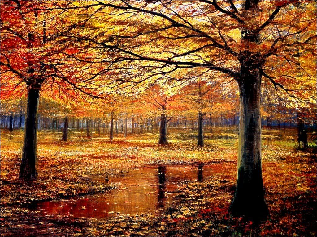 scenery wallpaper fond ecran gratuit paysage d 39 automne. Black Bedroom Furniture Sets. Home Design Ideas
