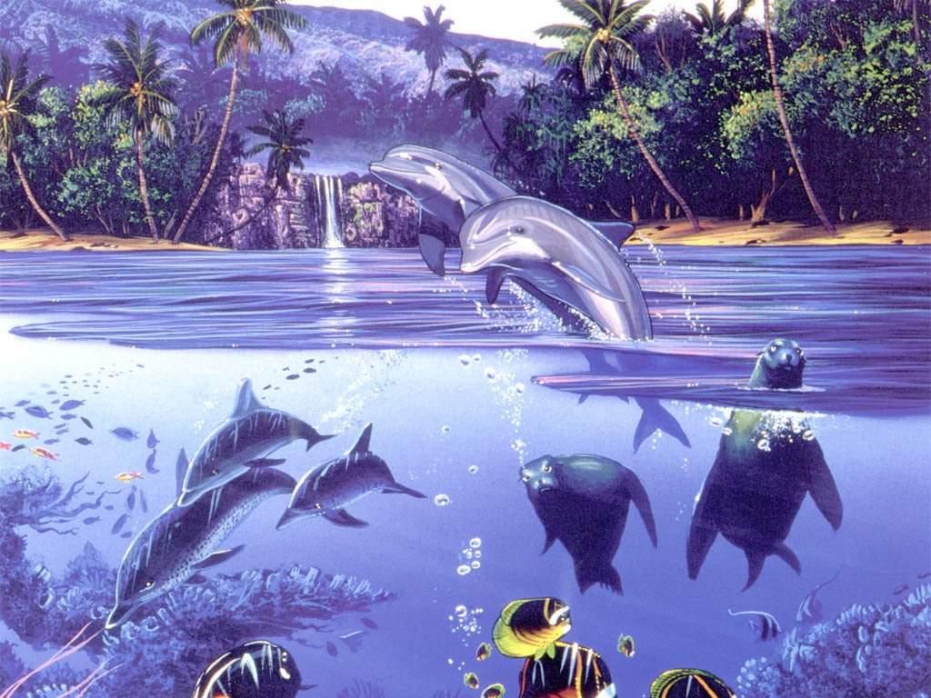 Fonds d ecran dauphins for Wallpaper pour ordinateur