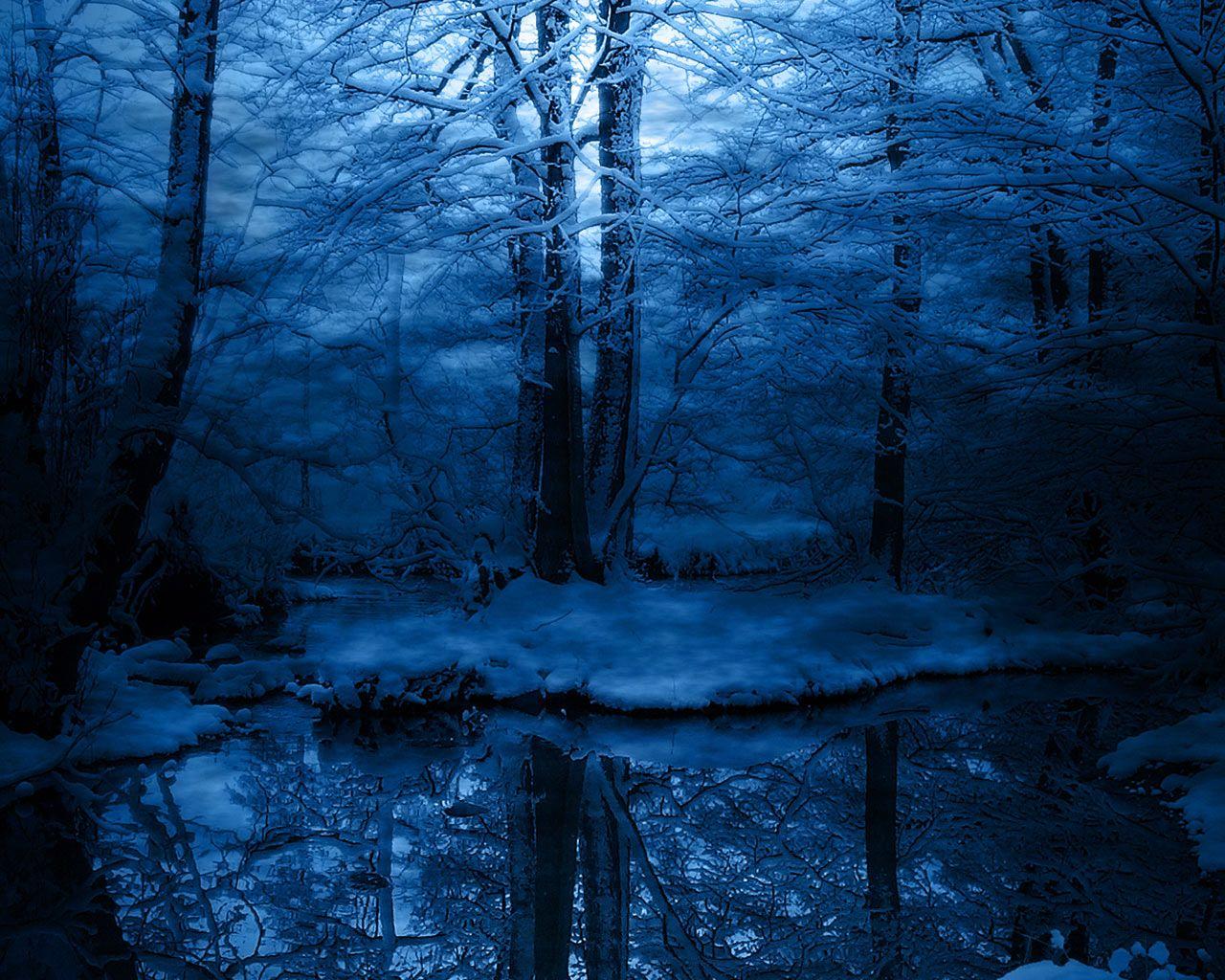 fond d'écran d'hiver