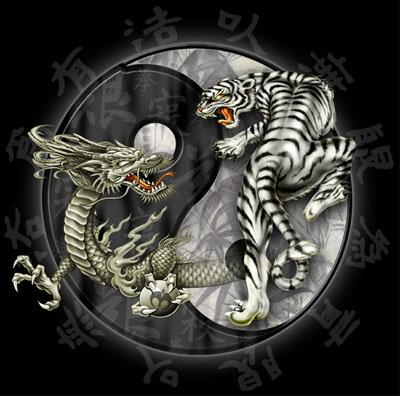 image tigre & dragon