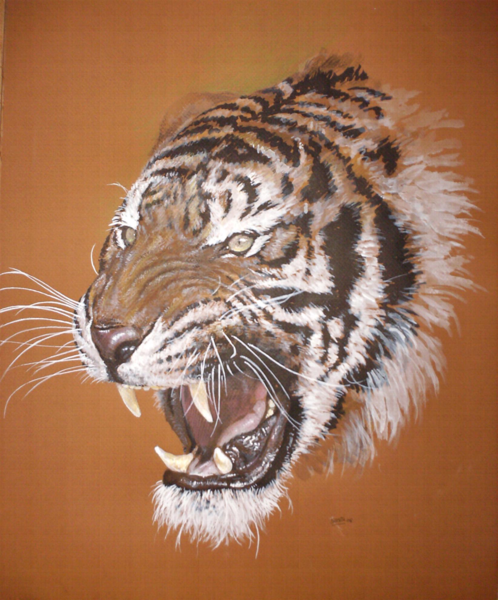 Images tigres - Image dessin tigre ...