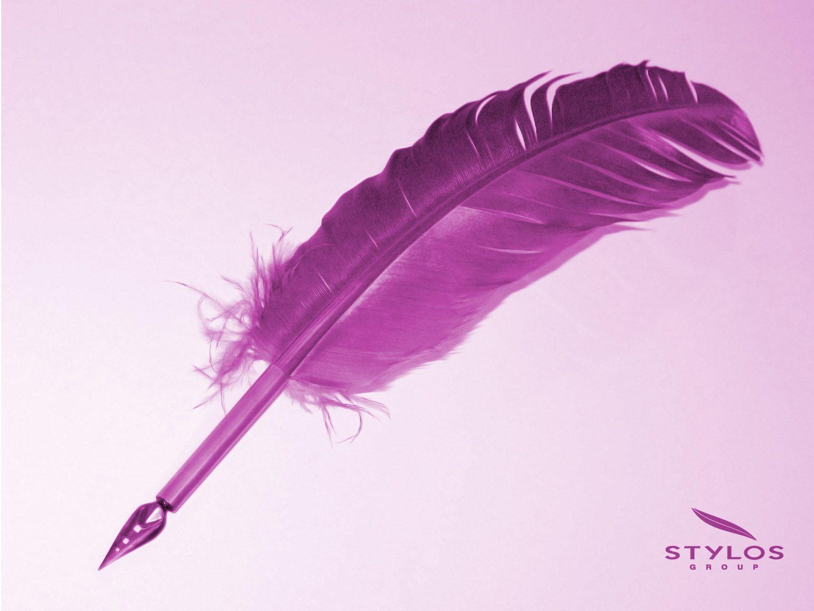 fond d'écran plume violette